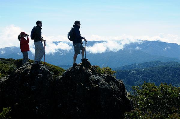 Naturskønne Costa Rica har fundet vej til danskernes ferieplaner. Det erfarer Jysk Rejsebureau.