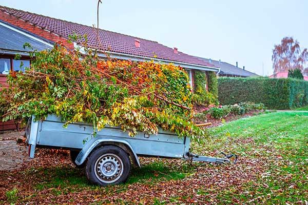 Efteråret betyder haveaffald og ture til genbrugspladsen med afklippede grene, græs, blade og visne stauder.